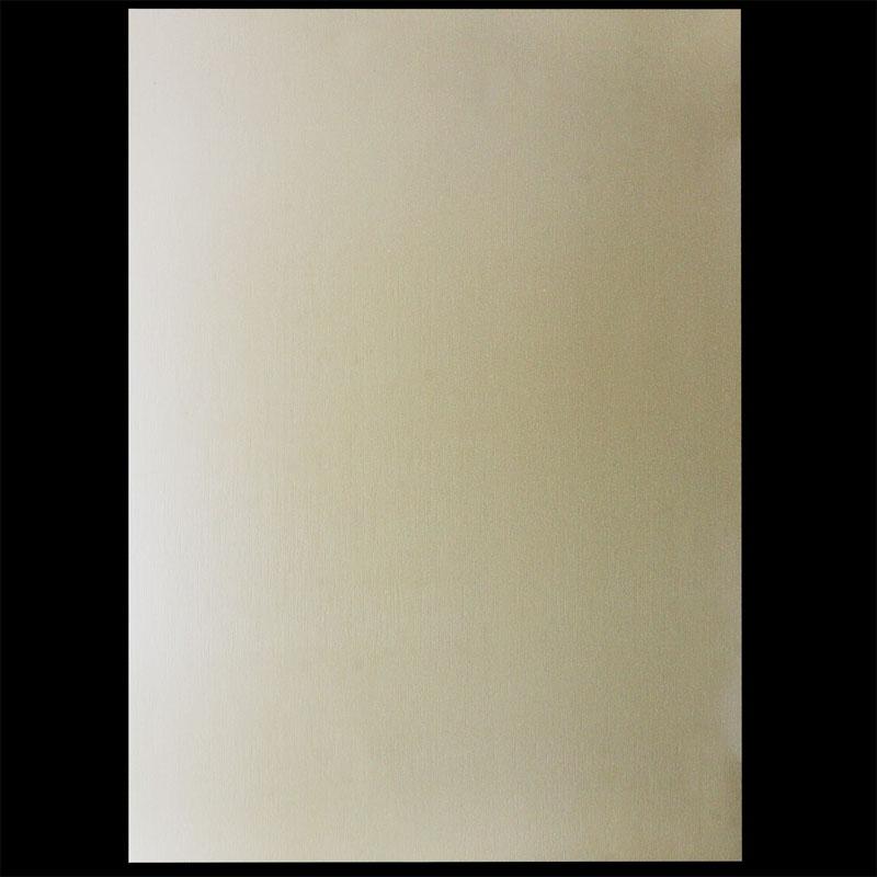 A4 Metallic Paper 300GSM 3016 10Sheet A4M3016