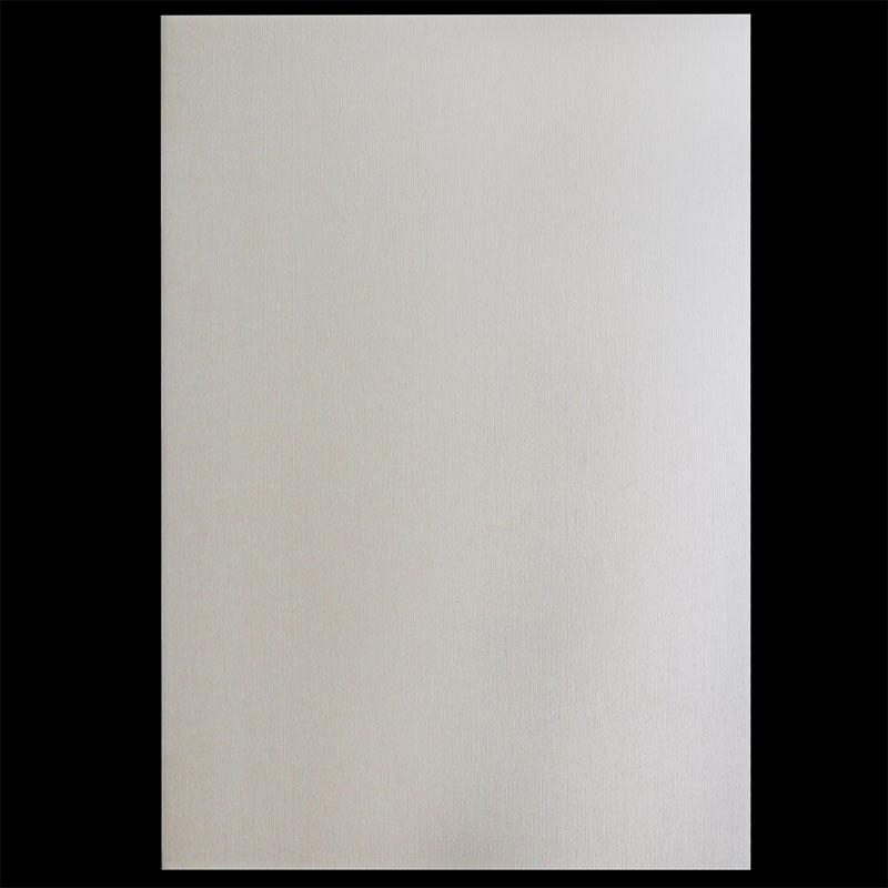 A4 Metallic Paper 300GSM 3017 10Sheet A4M3017