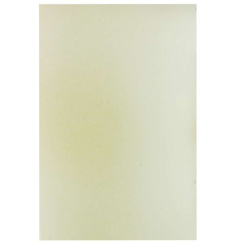 A4 Metallic Paper 300GSM 3023 10Sheet A4M3023