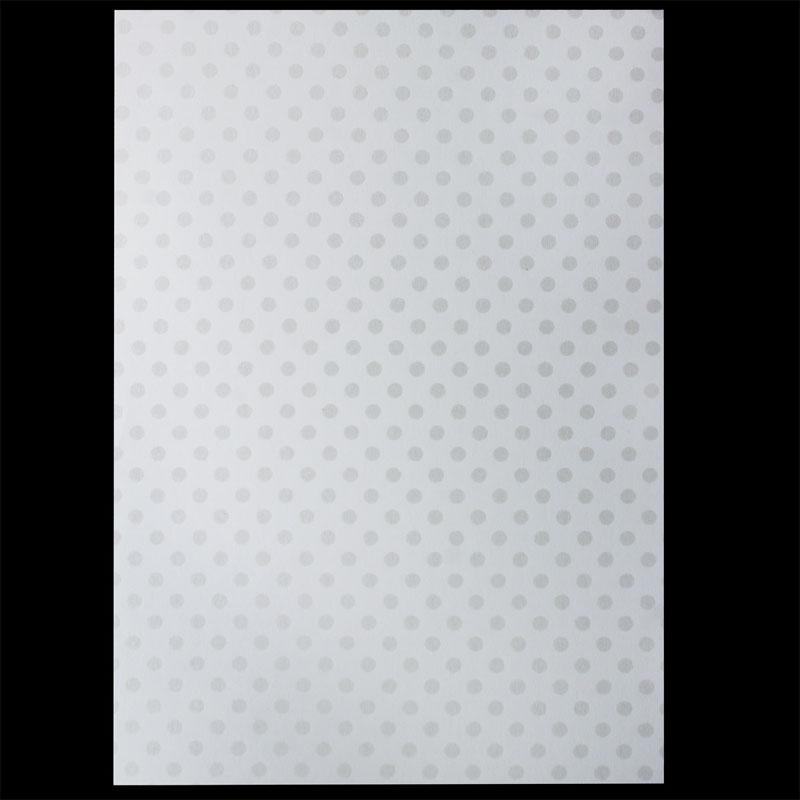A4 Metallic Paper 300GSM 3025 10Sheet A4M3025